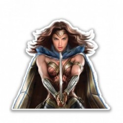 Wonder Woman Attack -...