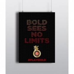 Bold Sees No Limits - 12 X...